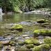<p><a href=&quot;http://www.flickr.com/people/ciddi/&quot;>Ciddi Biri</a> posted a photo:</p>&#xA;&#xA;<p><a href=&quot;http://www.flickr.com/photos/ciddi/20064489659/&quot; title=&quot;Zakopane - Nature park&quot;><img src=&quot;http://farm1.staticflickr.com/377/20064489659_cb51d26594_m.jpg&quot; width=&quot;240&quot; height=&quot;150&quot; alt=&quot;Zakopane - Nature park&quot; /></a></p>&#xA;&#xA;<p>Zakopane-Poland , Nature Park</p>