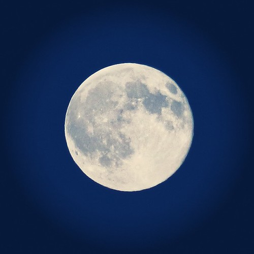 croatia bluemoon virovitica