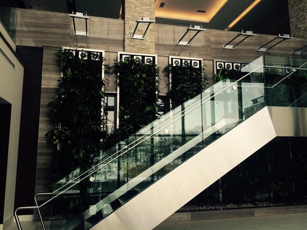 Escalator Lighting View 2