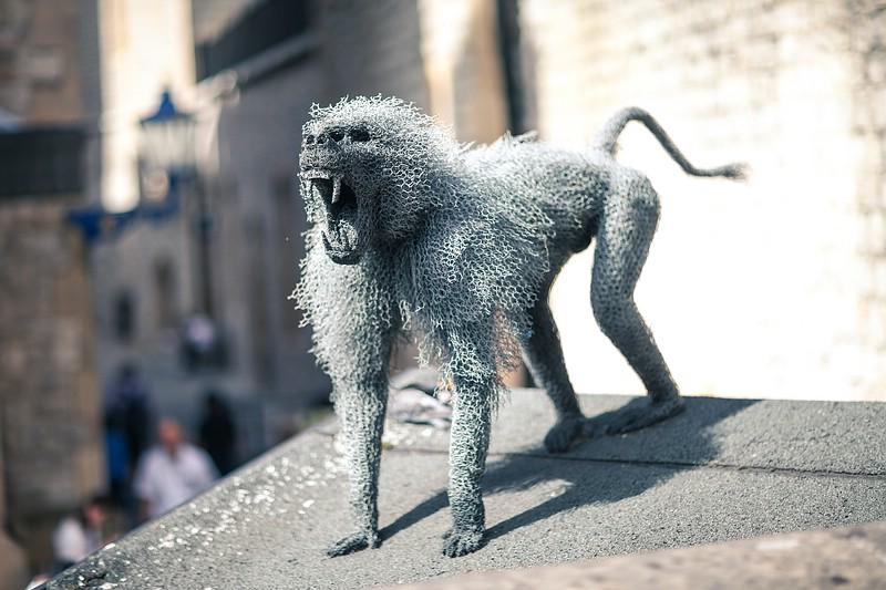 Baboon - Animal sculpture