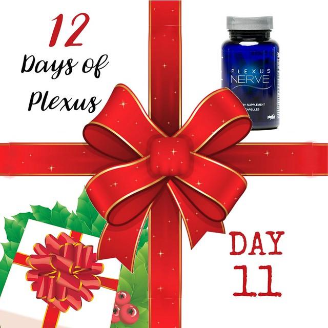 Day11Plexus