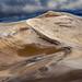 Reef Beach Dunes by Posnov