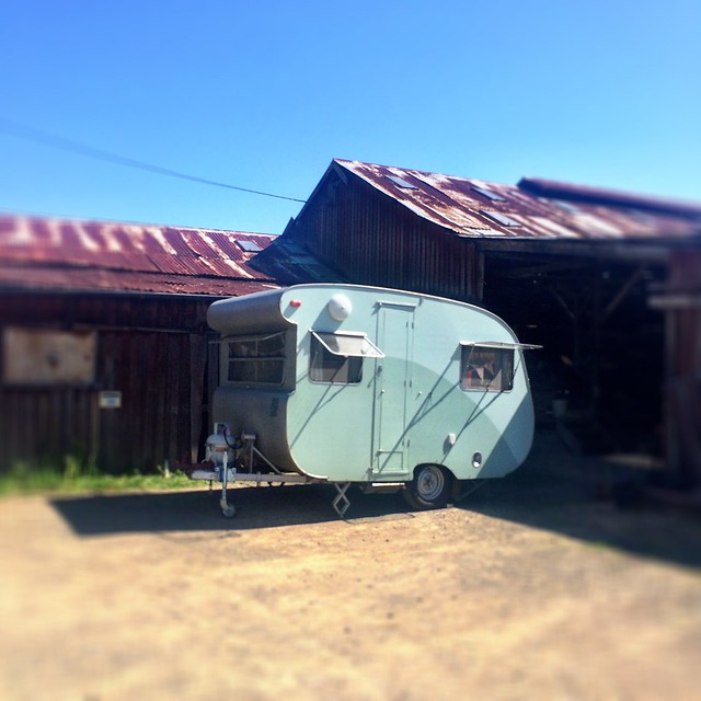Little caravan. Cygnet.