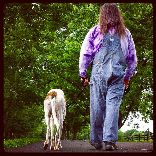 Walking #Cane #DogsOfInstagram #greyhound #overalls #vintage #tiedye #HickoryStripe #EastAurora #KnoxFarm