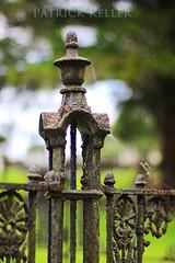 natchez_city_cemetery_MS_4386