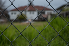 wire fencing, home fencing, chain-link fencing, fence, grass, sunlight, plant, line,