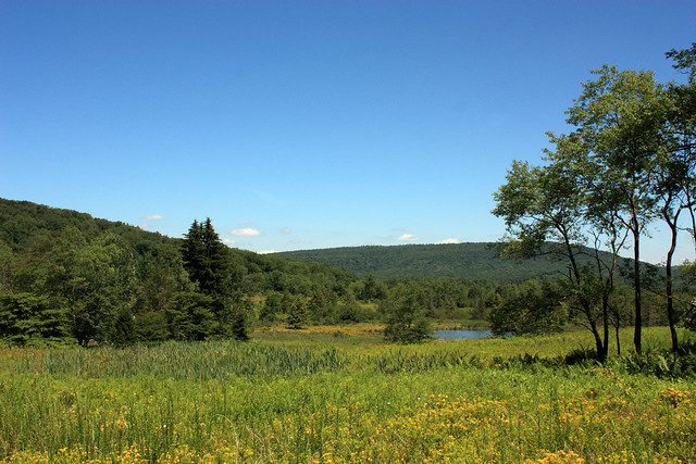 20150724_Canaan_Valley_State Park_018