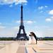 Love Paris by envisionpublicidad