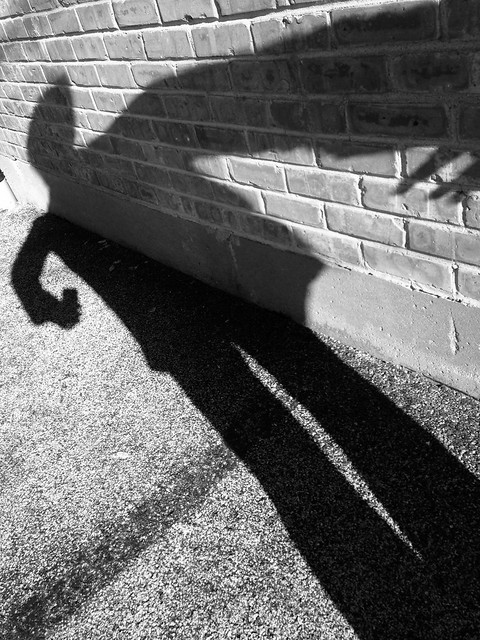 Monster's Shadow