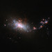 Hubble Looks in on a Galactic Nursery by NASA Goddard Photo and Video