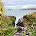 Small photo of Amlwch Coast