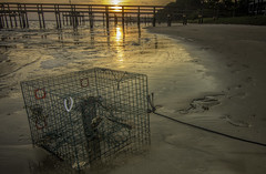 Crab Trap at Dusk