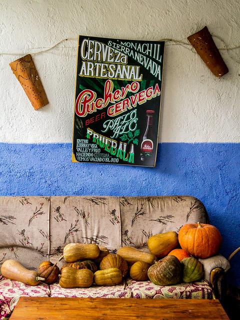 Spain - Granada - Monachil - Merendero El Puntarron [EXPLORED 2017-Jan-26]
