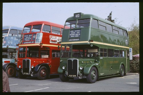 Green and Red RT buses