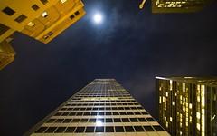 Moonlight on Market Street