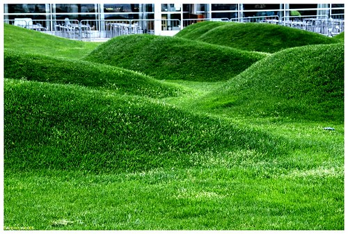 Hilly lawn by Nimages DR, Flickr