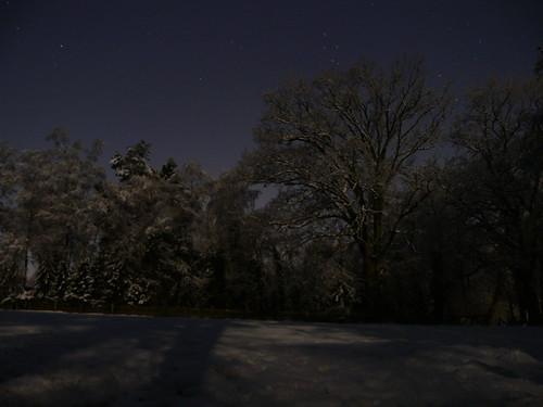 schnee trees winter sky snow night germany stars nacht himmel bäume fischerhude fz30 sterne wümmewiesen nightsights
