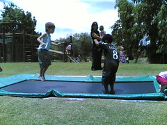 trampolining--equipment and supplies, sports, trampoline,