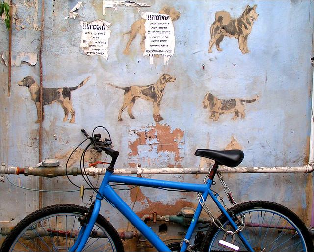 Bright Hope Dog Training
