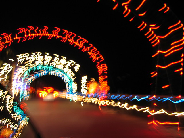 Christmas Lights - Virginia Beach