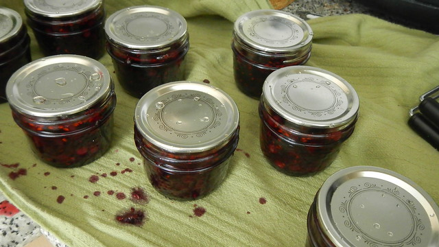 Saskatoon Berry Jam 21