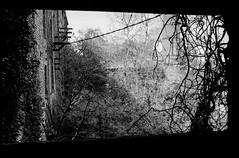 Cheminée - Anciennes Tanneries - Rennes - Sylvain Brajeul ©