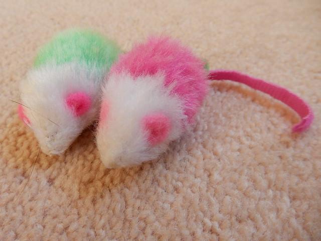 mice are nice! (7)