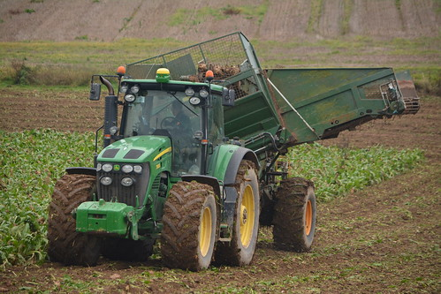 john deere 7930 tractor thyregod t7 triple row beet harvester jd green mallow sugarbeet fodderbeet fodder sugar winter feed county cork ireland irish farm farmer farming agri agriculture contractor field ground soil earth cows cattle work working horse power horsepower hp pull pulling cut cutting crop lifting machine machinery nikon d7100 crops collecting collect tillage traktor tracteur traktori trekker trator ciągnik