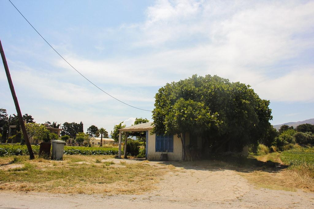 Det lokale liv på Kos, Grækenland