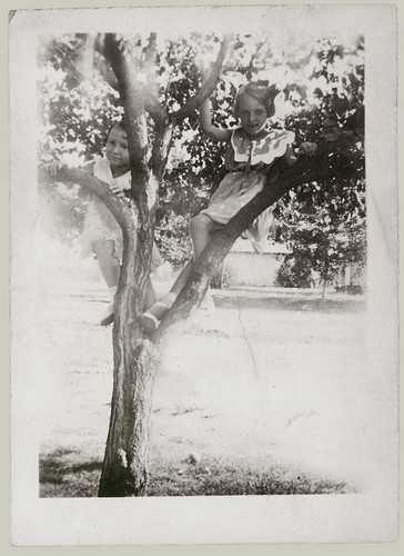 Two children in a tree