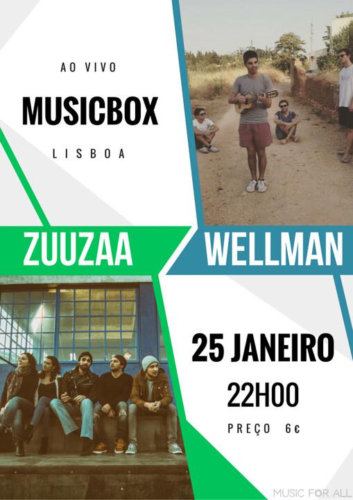 Zuuzaa + Wellman_Flyer Concerto Musicbox