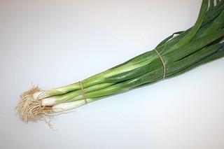 07 - Zutat Frühlingszwiebeln / Ingredient scallions