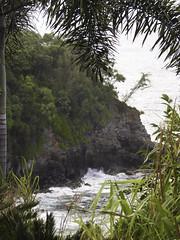 Hawaii-1566