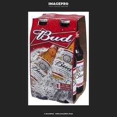Bud_x4-m (2)