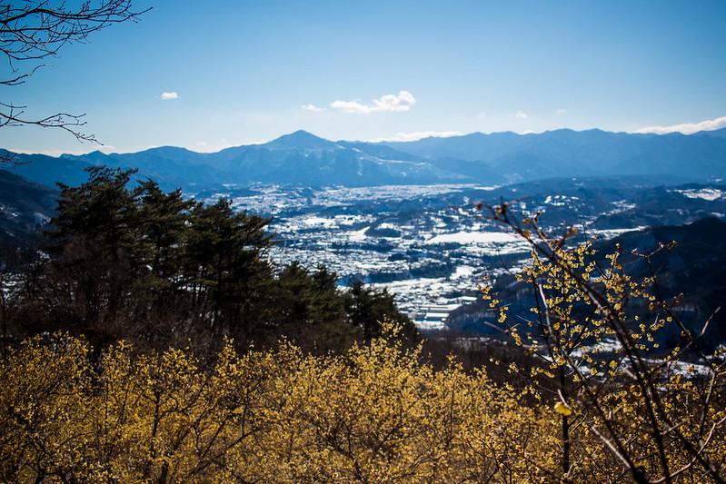 20160124-宝登山-0175.jpg