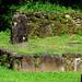 México - Izapa por Galeon Fotografia
