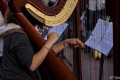 string instrument, clãrsach, harp, string instrument,