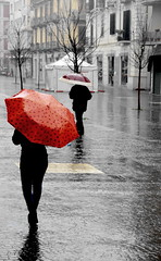 Umbrellas & Umbrellas