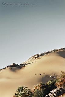 Sand Hill, 2009