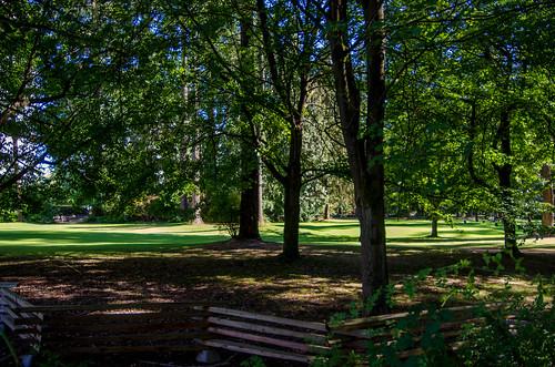 Burnaby Central Park