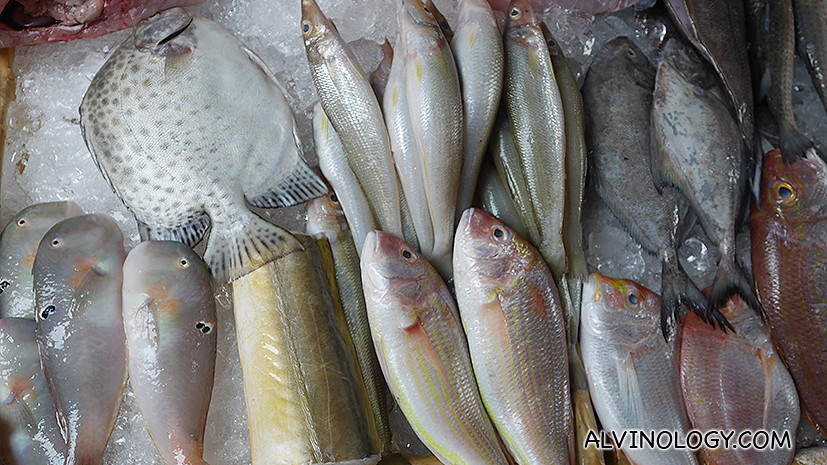 Assorted fishes