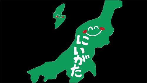 脱毛サロン 医療脱毛 新潟県