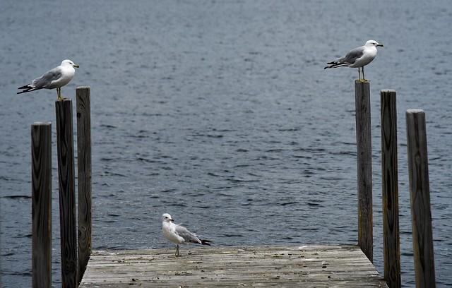 Lake George_-9