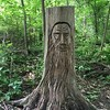 Trunk #carving of an old man with a long beard in #JoshuaCreekTrail in #Oakville