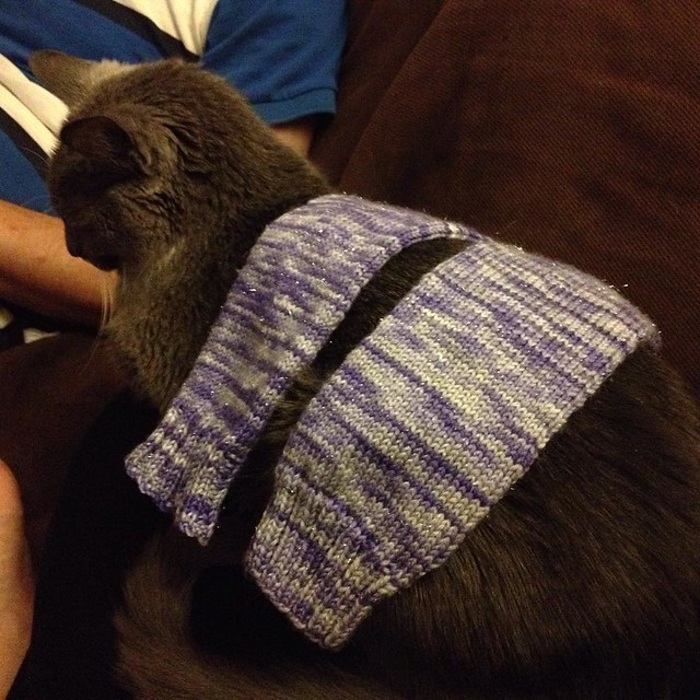 Sio tries on the legwarmers. #knitting