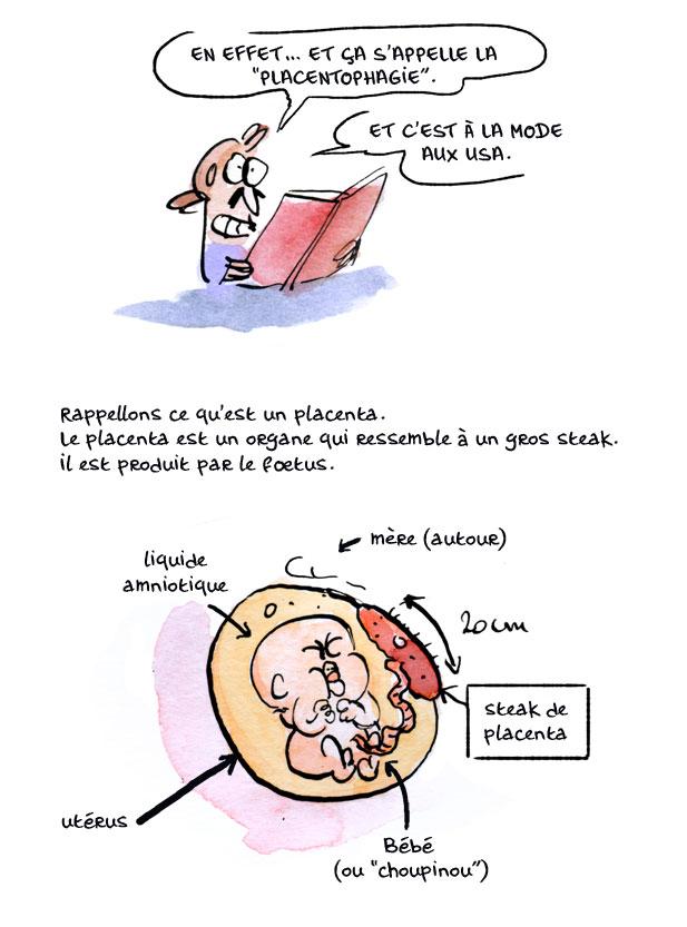 placenta01
