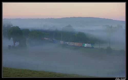 Bancs de brouillard