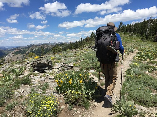 PCT: Day 89