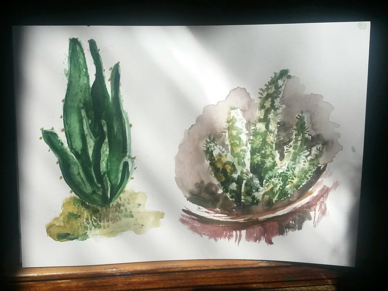 Cactus watercolor on paper
