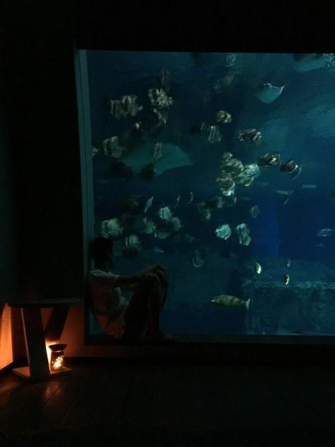 Sentosa Ocean Suite